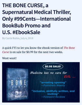 book promo screenshot. Carrie Rubin's blog