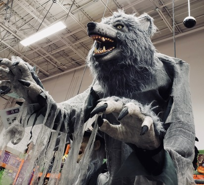 Really scary life-sized Halloween decoration werewolf (© Image, all rights reserved, copyrighted, NO permissions granted)