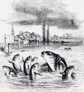 Mother fish talking to her school of little fish The Fables of Floridan. 1888 (USPD, pub.date, artist life/Commons.wikimedia.org)
