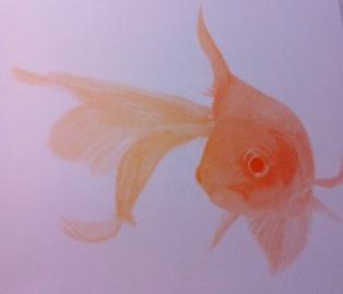 Goldfish print (Scrud 123/Commons.wikimedia.org)