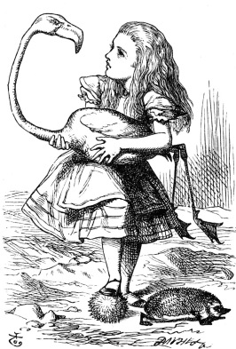 Alice in Wonderland playing whack the mole with a flamingo. 1865. Tenniel. (USPD.pub.date, artist life/Commons.wikimedia.org)