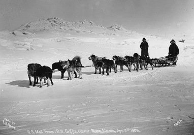 US dog sled mail team and carrier. Nome Alaska, (1906 Norwell photo/USPD. artist life/Commons.wikimedia.org)