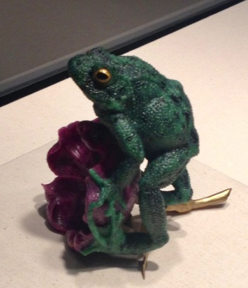 Green Frog on purple flower. (Houston Museum Natural Science /© image copyrighted, all rights reserved, no permissions granted)