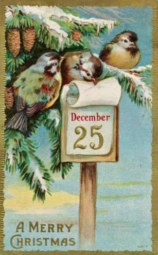 Three birds on vintage Christmas card. (USPD: artist life, pub.date/Commons.wikimedia.org)
