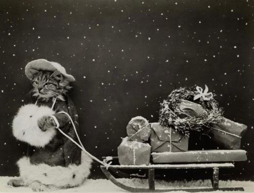Christmas cat shopper pulling gifts on sled., 1914 postcard. NYPub.Lib (USPD. pub.date, artist life/Commons.wikimedia.org)