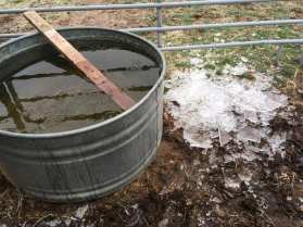horse water tub with ice. (© image: no permissions granted, all rights reserved, copyrighted)