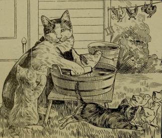 Cat washing birds. (1907 Boston Blue Book/USPD. artist life/pub.date/Commons.wikimedia.org)