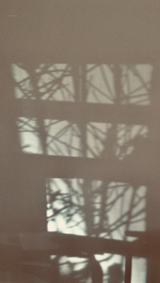 shadows on the wall.(© image: all rights reserved, Copyrighted, NO permissions granted)