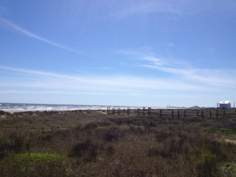 Beach and dunes. Galveston East Beach. (© image. all rights reserved, copyrighted, no permissions granted)