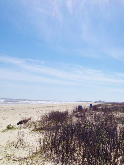 Galveston's east beach. dunes and water's edge (© image: all rights reserved, copyrighted, no permissions granted)