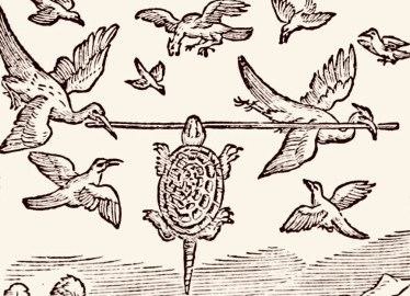 Birds carrying turtle on a stick. Batten, Fairy Tales of India, 1892 (USPD. pub.date, artist life/Commons.wikimedia.org)