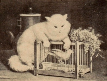 Cat hanging over bird cage (Rijksmuseum/ USPD.artist life, pub.date/Commons.wikimedia.org)