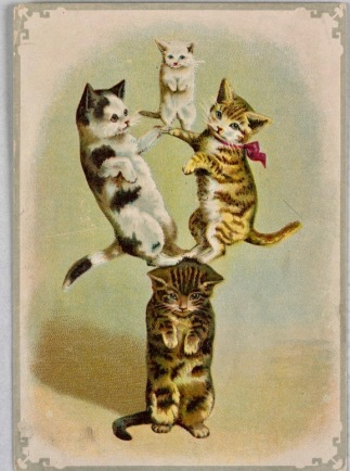 Four cat acrobats (ca.1890 greeting card/USPD.pub.date, artist life/Commons.wikimedia.org)