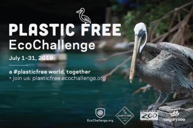 Pelican for Plastic Free EcoChallenge, 2019 (screenshot ecochallenge.org)