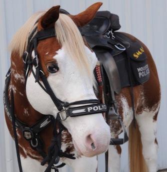 Horse. Paint horse Box Office Smash Houston. Mounted Patrol Horse Smash (From Facebook timeline)