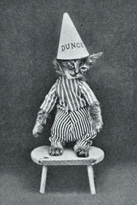 Cat in costume with dunce hat. (1915. Harry W. Frees/ Little folks of Animal Land/Google Books) (USPD. pub.date, artist life/Commons.wikimedia.org)