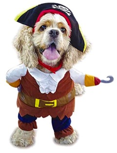 Dog in pirate costume. (Image from Amazon)