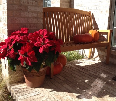 Front porch scene with Christmas poinsettia and pumpkins on bench (© image. Copyrighted. NO permissions granted. All rights reserved )