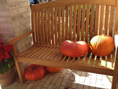 Four pumpkins on a bench. (© image. Copyrighted. No permissions granted. ALL rights reserved)