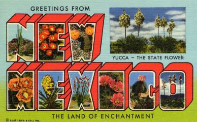 Post card. New Mexico with cactus and flowers. Teich & Co. 1950. (USPD. pub.date, artist life/Commons.wikimedia.org)