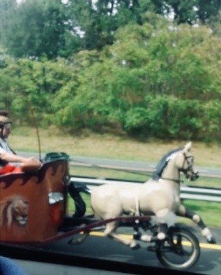 Custom Chariot car with horse on freeway. (YouTube)