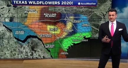 Map of Texas regions' land features. Geography (screenshot ABC 13 news)