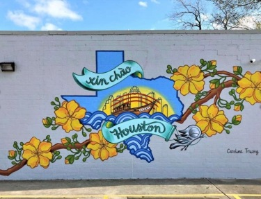 Midtown Houston mural by Caroline Truong at Thien An Sandwiches (Screenshot Truong)