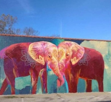 Two pink elephants mural. Heights (niamoves)