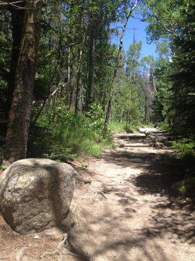 Boulder on level dirt trail in Colorado (© Image. all rights reserved, copyrighted, no permissions granted)
