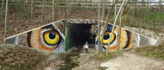 Owl Eyes by Anat Ronen( Memorial Park pedestrians walkway)