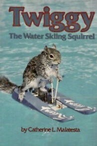 Squirrel on water skis (Ebay image of book cover)