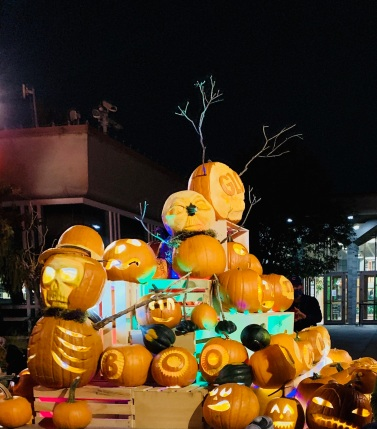 Carved Pumpkin display (© image copyrighted , no permissions granted, ALL rights reserved)
