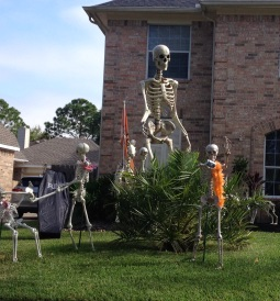 Halloween yard skeleton giant with selfie friend (© image copyrighted, all rights reserved, NO permissions granted)